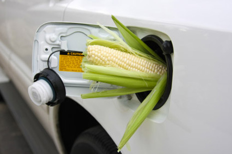 Are Crops for Food or Fuel?