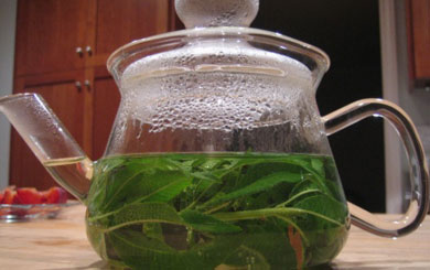 Tea, tisanes, brews and chai recipes