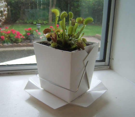 Recycled-Takeout-Container-Planter