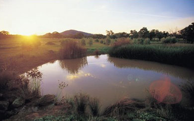 Water redistribution.  Good or bad idea?