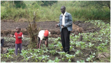 The Community Garden Project partners with the Nangabo sub-county Parents' Association of Children with Disabilities (NAPACD) to identify and build relationships with families who have one or more children with a physical disability. (Photo credit: Alex Zizingga)
