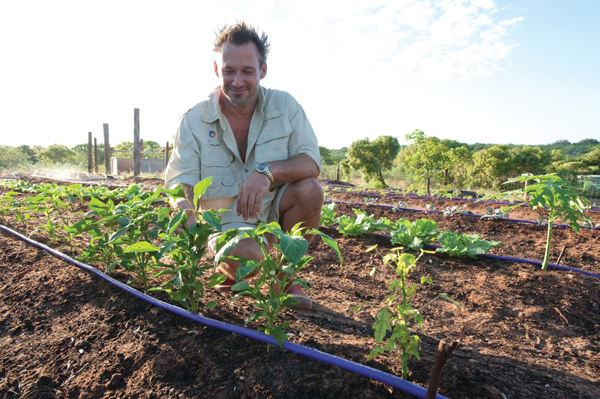eco-beach-broome-veg-garden
