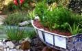 Aquaponics and Goldfish Pond Systems