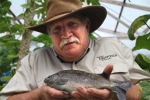 Murray Hallam believes we need to eat clean unpolluted fish and vegetables. Choosing the right tank is something we need to pay more attention to.