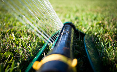 How to Best Water your Lawn