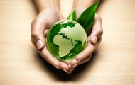 Go Green For Your Business Marketing